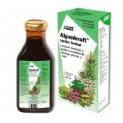 Alpenkraft (jarabe 250 ml)